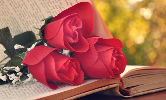 Что почитать интересного