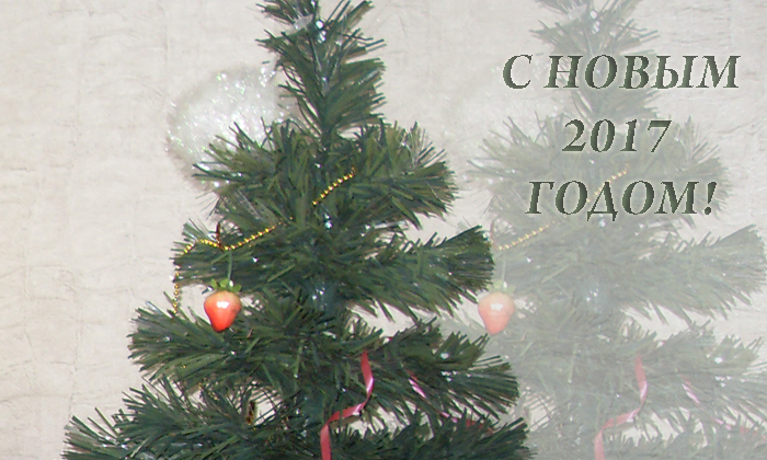 """Новогодний подарок в """"Наталкиной читалке"""""""